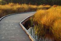 Boardwalk in J.N. Ding Darling National Wildlife Refuge on Sanibel Island, Florida