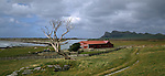 Farm at Waitangi West with Maunganui Mountain in background in the Chatham Islands. New Zealand.