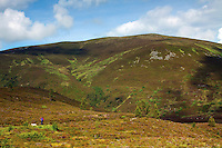 Meall a Bhuachaille from Abernethy National Nature Reserve, Cairngorm National Park, Badenoch & Speyside