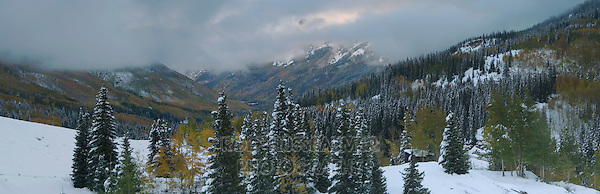 Early Snow and Aspen trees, Red Mountain Pass, Ouray, Rocky Mountains, Colorado, USA, September 2006
