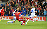 UEFA European Championship at Cardiff City Stadium - Wales v Cyprus : <br />  Hal Robson Kanu scores for Wales.