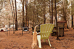 January 2, 2013. Pittsboro, North Carolina.. Outside the main refuge building there is over an acre of fenced in grounds for the hundreds of cats to play and roam. . Siglinda Scarpa, originally from northern Italy, runs the Goathouse Refuge, a no kill shelter for cats. Scarpa, who is also a ceramic artist, runs the shelter with 5 full time employees and currently has over 260 cats in the refuge..