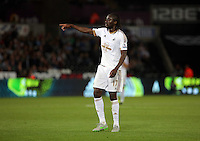 Pictured: Eder of Swansea Tuesday 25 August 2015<br /> Re: Capital One Cup, Round Two, Swansea City v York City at the Liberty Stadium, Swansea, UK.