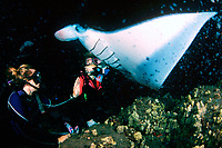 scuba divers and reef manta ray, Mobula alfredi, feeding at night, Kona, Big Island, Hawaii, Pacific Ocean