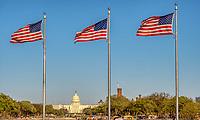 US Capitol Building American Flag Washington DC National Mall