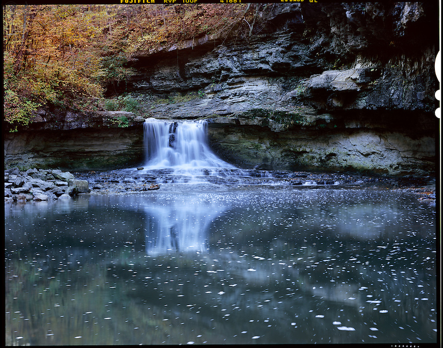 """"""" McCormick's Creek Falls""""<br /> McCormick's Creek State Park <br /> Spencer, IN<br /> 2009<br /> <br /> McCormick's Creek State Park was established in 1916 as Indiana's first state park.  It is still a very popular place to visit with its limestone canyons and ravines.  Setting up before an autumn  sunrise, I captured one of the park's noted falls.  Steam rose from the warm waters into the cool, crisp morning air enhancing the glorious experience. <br /> <br /> 4 x 5 Large Format Film"""