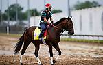 April 29, 2021: Helium gallops in preparation for the Kentucky Derby at Churchill Downs in Louisville, Kentucky on April 29, 2021. EversEclipse Sportswire/CSM