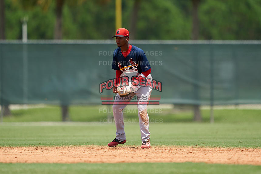 GCL Cardinals shortstop Franklin Soto (5) during a Gulf Coast League game against the GCL Marlins on August 12, 2019 at the Roger Dean Chevrolet Stadium Complex in Jupiter, Florida.  GCL Marlins defeated the GCL Cardinals 9-2.  (Mike Janes/Four Seam Images)