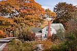 Fall color in Sedgewick, ME