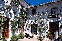 Spanien, Andalusien, Platz Plazuela de San Antonio im Altstadtviertel Barrio de la Villa in  Priego de Cordoba