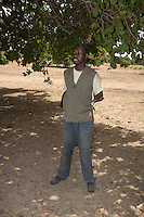 Cashew Nut Farmer, near Sokone, Senegal. His field is well-tended, with no brush or low-lying branches under the trees.