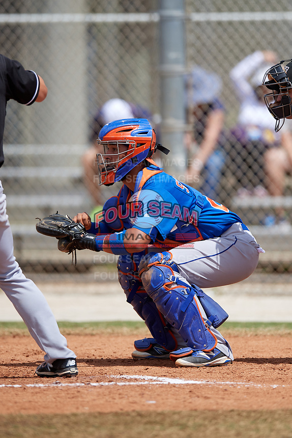 New York Mets Catcher Ali Sanchez (20) during a minor league Spring Training game against the Miami Marlins on March 26, 2017 at the Roger Dean Stadium Complex in Jupiter, Florida.  (Mike Janes/Four Seam Images)