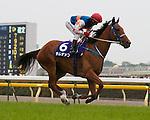 5 June 2011: Hong Kong's multiple G1 winner, Thumbs Up (NZ) races in the G1 Yasuda Kinen at Tokyo Racecourse in Japan.