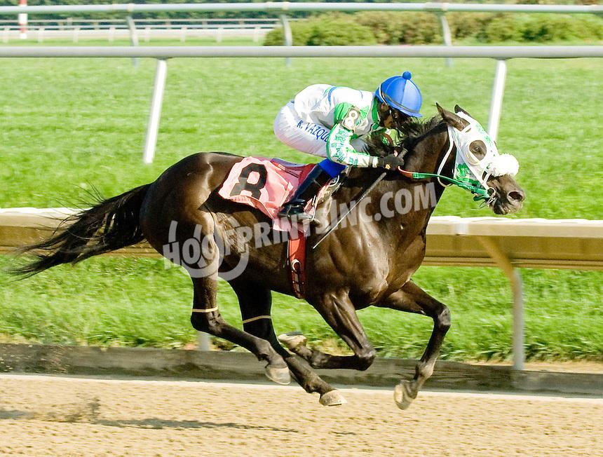 Riversrunrylee winning at Delaware Park on 9/13/11