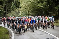 peloton   <br /> <br /> 4th Liège-Bastogne-Liège-Femmes 2020 (1.WWT)<br /> 1 Day Race: Bastogne – Liège 135km<br /> <br /> ©kramon