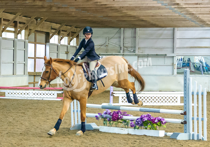 Interscholastic Equestrian Association Hunt Seat Show at Top Rail Farm  on 1/12/20