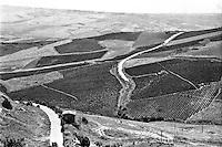 Campagna nella zona di Gibellina (Trapani) --- Countryside nearby Gibellina (Trapani)