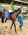 OCT 03, 2021: SAUCY LADY T post parade in  Gr.1  Frizette Stakes, for 2 year old fillies, at Belmont Park, Elmont, NY.  Sue Kawczynski/Eclipse Sportswire/CSM