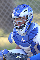 Hendrik Clementina (54) of the AZL Dodgers catches in the bullpen before a game against the AZL Diamondbacks at the Los Angeles Dodgers Spring Training Complex on July 3, 2015 in Glendale, Arizona. Diamondbacks defeated the Dodgers, 5-1. (Larry Goren/Four Seam Images)