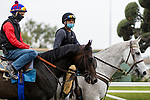 April 17, 2021: Rock Your World with Cerapio Figueroa aboard (left) works out at Santa Anita Park in preparation for the Kentucky Derby, in Arcadia, California on April 17, 2021. Evers/Eclipse Sportswire/CSM