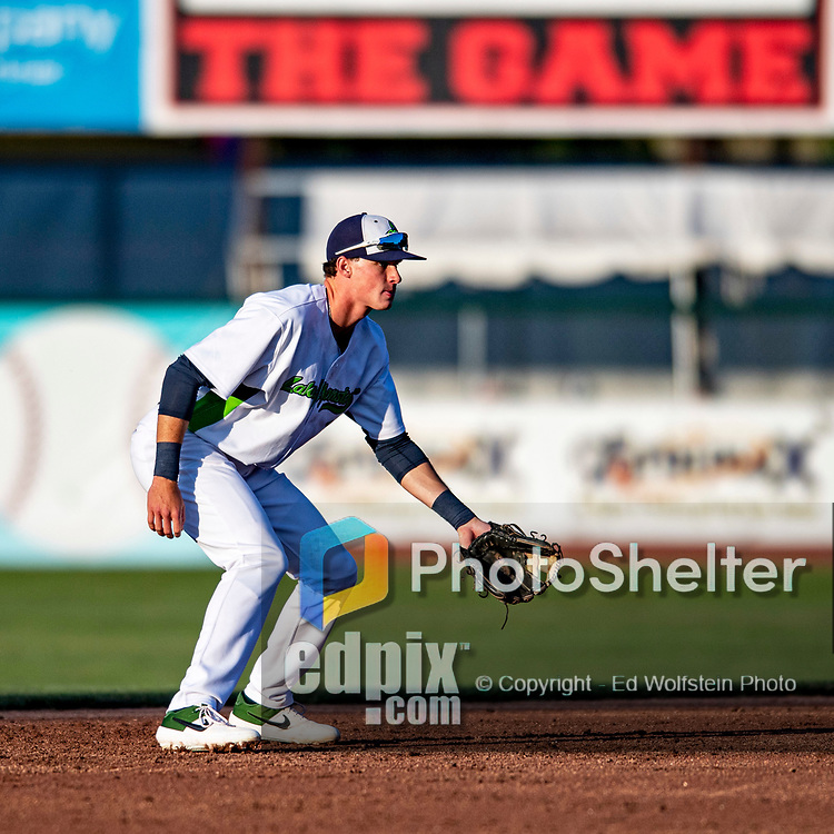 24 August 2019: Vermont Lake Monsters infielder Logan Davidson at short during a game against the Lowell Spinners at Centennial Field in Burlington, Vermont. The Lake Monsters fell to the Spinners 3-2 in NY Penn League action. Mandatory Credit: Ed Wolfstein Photo *** RAW (NEF) Image File Available ***