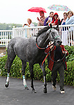 4 July 2009: INFORMED DECISION leaves the winner's circle after winning the 21st running of the Chicago Handicap at Arlington Park in Arlington Heights, Illinois.