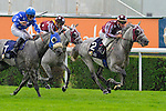 Damis (no. 2), ridden by Olivier Peslier and trained by Alban de Mieulle, wins the  group 1 President of the UAE Cup Series Arabian Stakes on June 24, 2012 at Saint-Cloud Racecourse in Saint-Cloud, France.  (Bob Mayberger/Eclipse Sportswire)