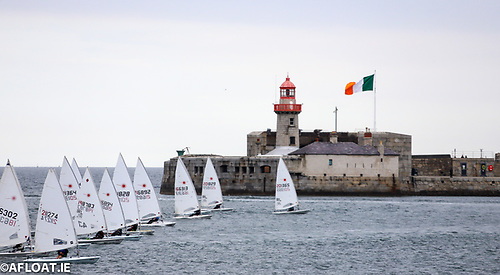 Dun Laoghaire Laser sailors racing inside the town's harbour in 2020. It looks like the single handed DBSC class will get a further boost this summer thanks to the continuing threat of COVID-19.