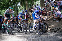 Julian Alaphilippe (FRA/Deceuninck - Quick-Step) at the front of the peloton up the infamous Muur van Geraardsbergen<br /> <br /> Stage 1: Brussels to Brussels(BEL/192km) 106th Tour de France 2019 (2.UWT)<br /> <br /> ©kramon