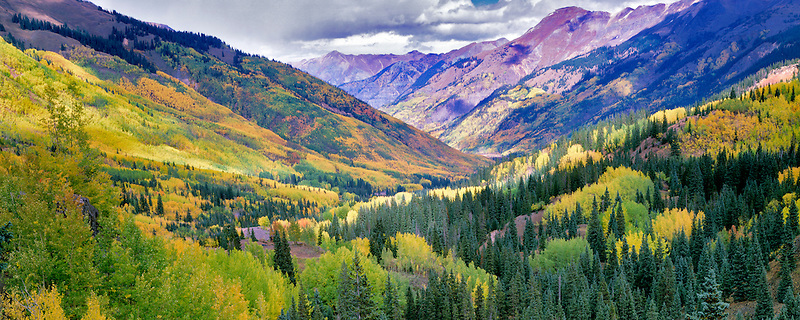 View from Red Mountain Pass with fall colored aspens. Uncompahgre National Forest, Colorado