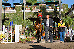 SEP 3,2014:Henry's Holiday appears at the padock in the Del Mar Futurity Stakes at Del Mar in Del Mar,CA. Kazushi Ishida/ESW/CSM