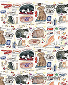 Kate, GIFT WRAPS, GESCHENKPAPIER, PAPEL DE REGALO, paintings+++++pet project dog & Cat wrap,GBKM393,#gp#, EVERYDAY ,sticker,stickers