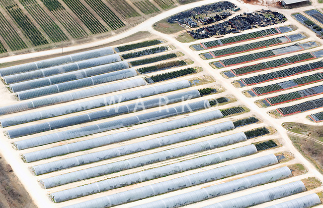 Greenhouses.  Texas.  March 2010