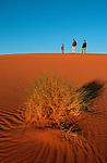 Famille dans les dunes de l'erg Chebbi. Maroc. mars 2006.
