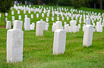 Tombstones, Arlington National Cemetery, Arlington, Virginia