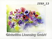 Franco, FLOWERS, BLUMEN, FLORES, paintings+++++,ITZP13,#f#, EVERYDAY
