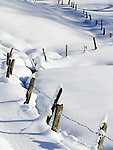 CH, Switzerland, Canton Uri, barbed wire fence in the snow