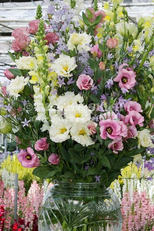 FLOWER ARRANGEMENT OF BELLFLOWER (CAMPANULA), LISIANTHUS (EUSTOMA), AND SNAPDRAGONS (ANTIRRHINUM)