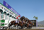 25 October 2008:  The field leaves the starting gate in the TVG Breeders' Cup Dirt Mile at Santa Anita Race Track in Arcadia, California.