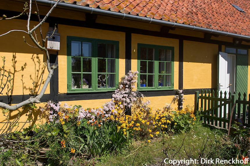 Fachwerkhaus und Vorgarten auf Frederiksø, Ertholmene (Erbseninseln) bei Bornholm, Dänemark, Europa<br /> half-timber house on Frederiksø, Ertholmene, Isle of Bornholm Denmark