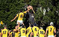 160820 Representative Rugby - Wellington Maori v Wellington Development