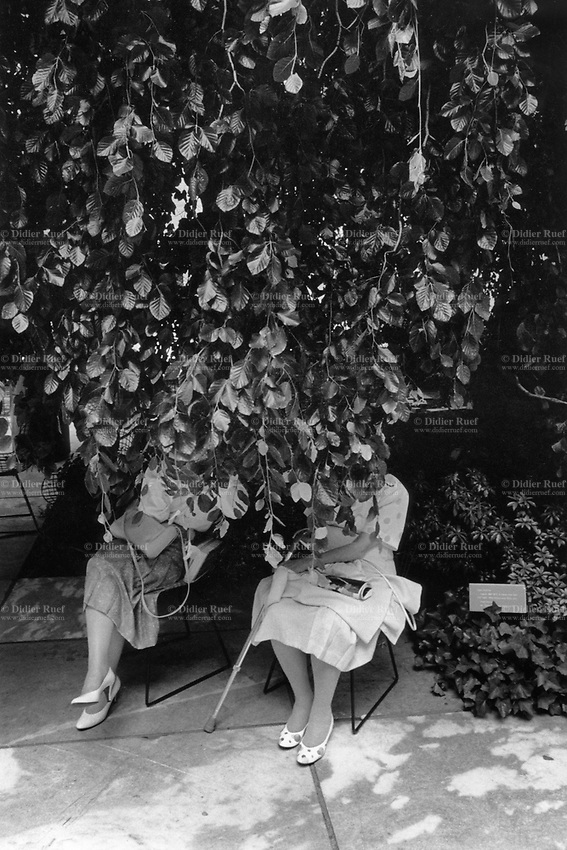 USA. New York  State. New York City. Museum of Modern Art (MoMA). Art museum. Two elderly women seat on chairs in the garden while enjoying some rest and shade. The United States of America (U.S.A. or USA), commonly known as the United States (U.S. or US) or America, is a country primarily located in North America. © 1998 Didier Ruef