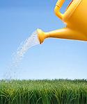 USA, Illinois, Metamora, Water can watering lawn