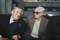 Вспомним, товарищ (1987)