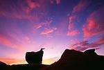 Rock formations at sunrise, Catavina Desert, Baja California, Mexico