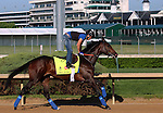 LOUISVILLE, KY - APRIL 24: Mo Tom (Uncle Mo x Caroni, by Rubiano) exercises on the track at Churchill Downs, Louisville KY in preparation for the Kentucky Derby. Owner G M B Racing, trainer Thomas A. Amoss. (Photo by Mary M. Meek/Eclipse Sportswire/Getty Images)