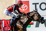DEL MAR, CA  AUGUST 18: #1 Prince Earl, ridden by Geovanni Franco, wins the Del Mar Mile (Grade ll) on August 18, 2019 at Del Mar Thoroughbred Club in Del Mar, CA.  ( Photo by Casey Phillips/Eclipse Sportswire/CSM)