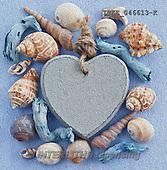 Isabella, MODERN, MODERNO, photo+++++,ITKE046613-K,#n# maritime,sea shells ,everyday