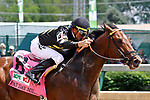 LOUISVILLE, KY - MAY 06: Wild Shot #8, ridden by Corey Lanerie, wins the Pat Day Mile Stakes  on Kentucky Derby Day at Churchill Downs on May 6, 2017 in Louisville, Kentucky. (Photo by Mary Meek/Eclipse Sportswire/Getty Images)