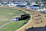 Jan.21, 2013 - Hot Springs, Arkansas, U.S - The 6th race field makes their way through turn one Saturday afternoon at Oaklawn Park.  (Credit Image: © Jimmy Jones/Eclipse/ZUMAPRESS.com)